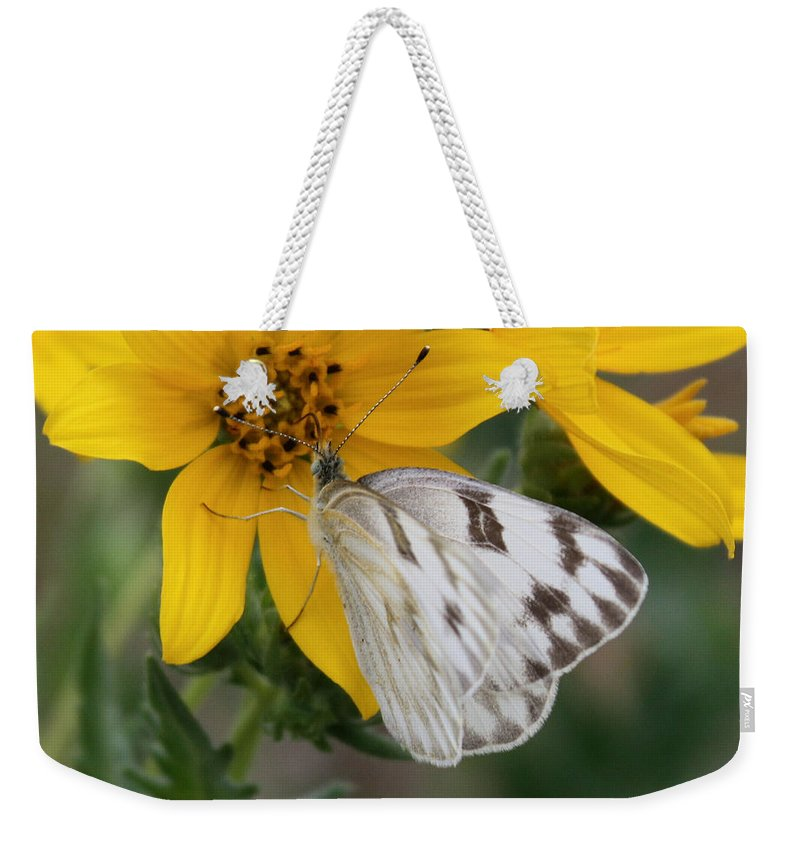 White Weekender Tote Bag featuring the photograph White Butterfly by Valerie Loop