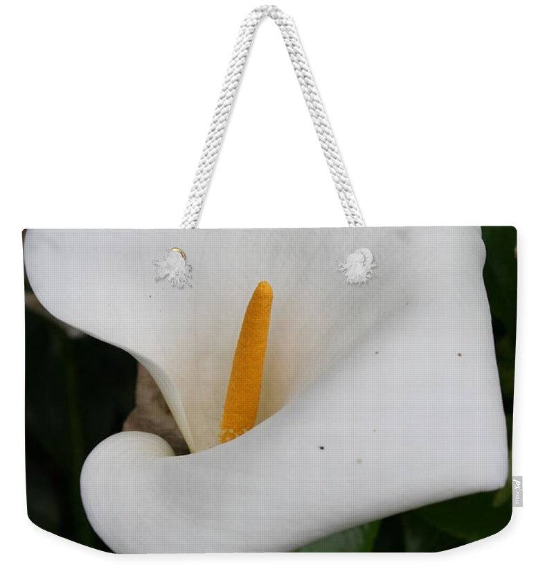 White Calla Weekender Tote Bag featuring the photograph White Calla Lilly by Christiane Schulze Art And Photography