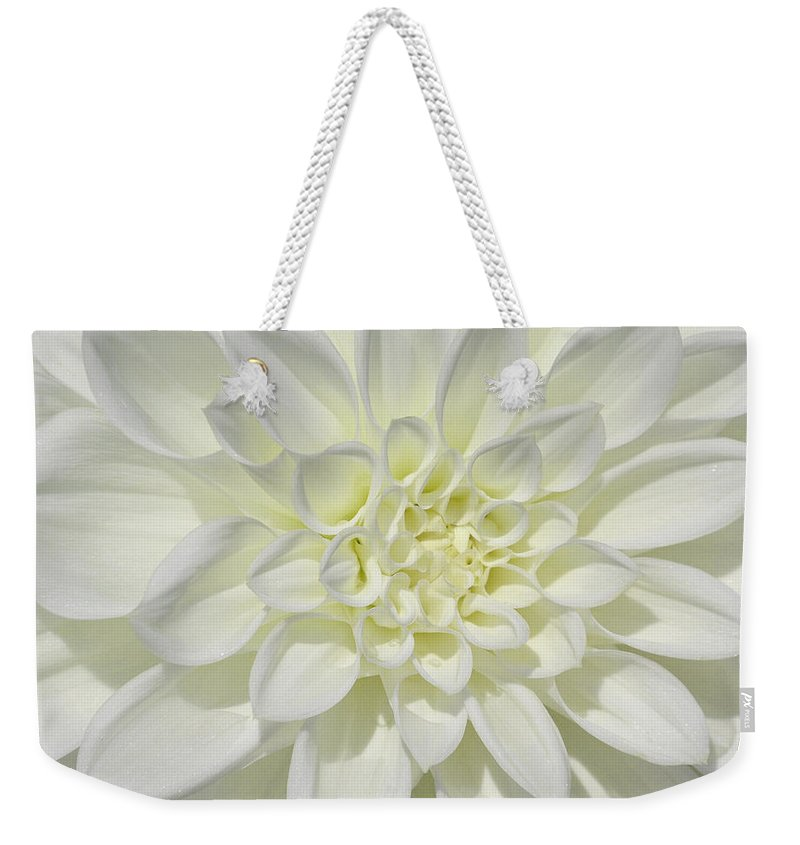 White Dahlia Weekender Tote Bag featuring the photograph White Dahlia Square by Tikvah's Hope