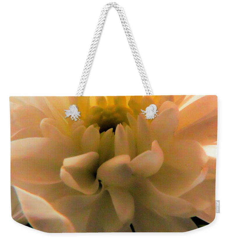 White Daisy Weekender Tote Bag featuring the photograph White Daisy by Tracey Beer
