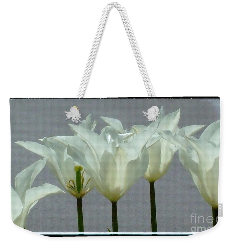 White Tulips Weekender Tote Bag featuring the photograph White Early Dawn Tulips Black Border by Joan-Violet Stretch