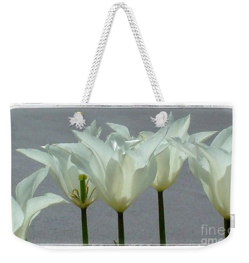 Tulips Weekender Tote Bag featuring the photograph White Early Dawn Tulips White Bordered by Joan-Violet Stretch