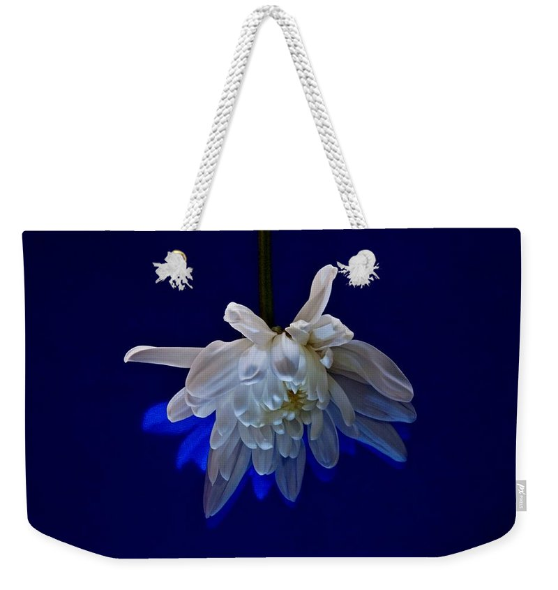 Flower Weekender Tote Bag featuring the photograph White Flower On Dark Blue Background by Phyllis Meinke