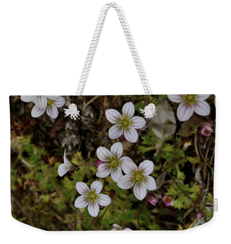 Moss Weekender Tote Bag featuring the photograph White Flowers And Moss by Cathy Mahnke