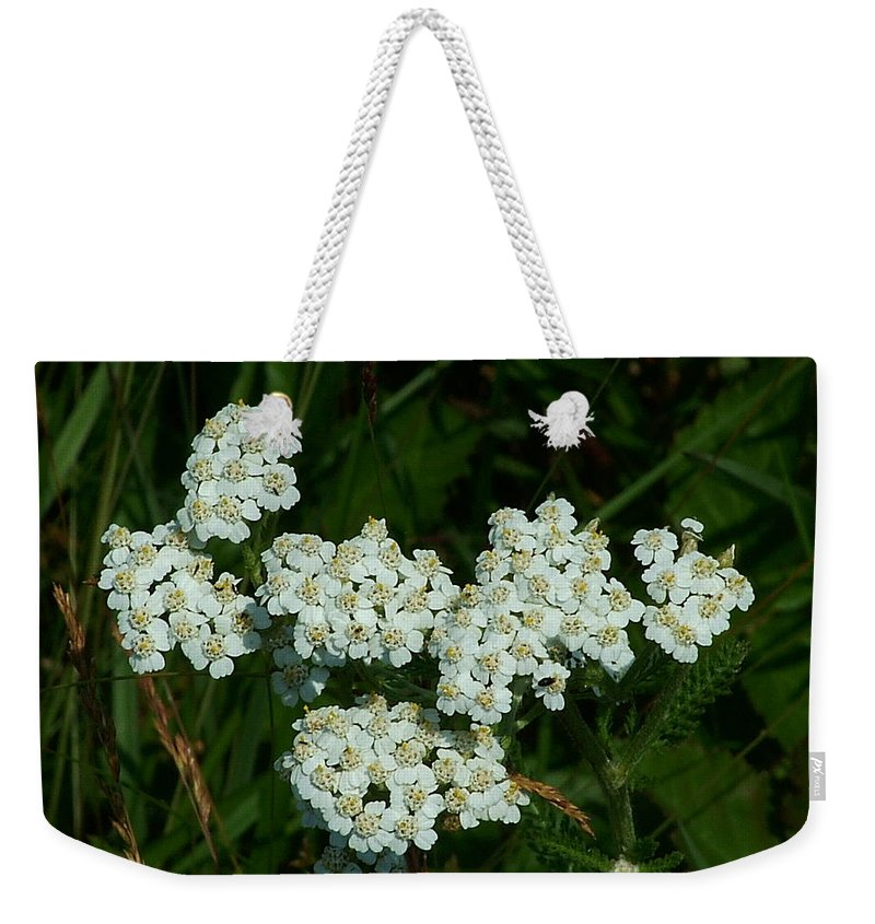 White Weekender Tote Bag featuring the photograph White Flowers In Green Field by Geoffrey McLean