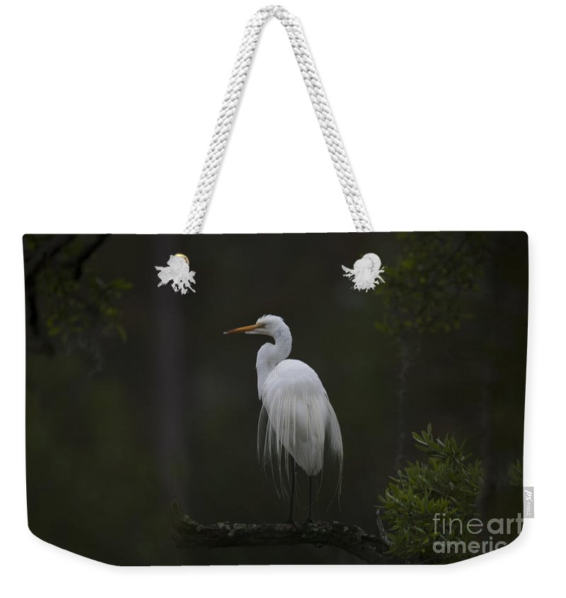 White Heron Weekender Tote Bag featuring the photograph Heron Feathers In A Ruffle by Dale Powell