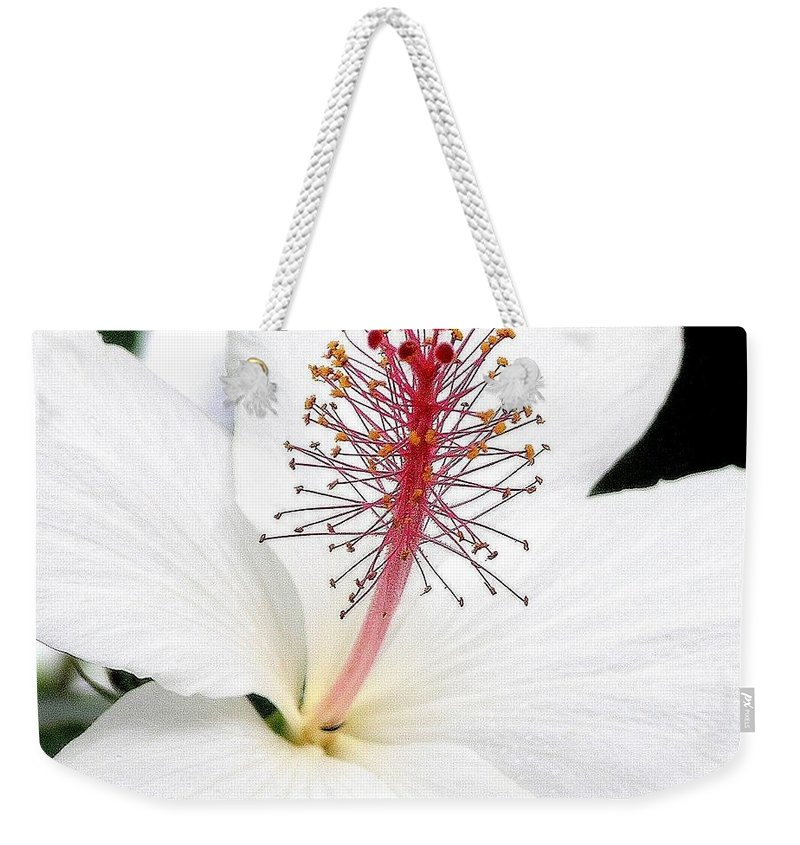 White Hibiscus Flower Weekender Tote Bag featuring the photograph White Hibiscus by Mary Deal