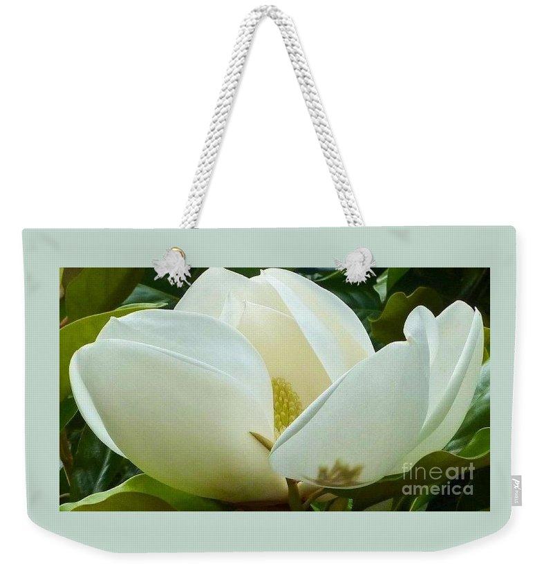 Magnolia Weekender Tote Bag featuring the photograph White Magnolia Elegance by Susan Garren