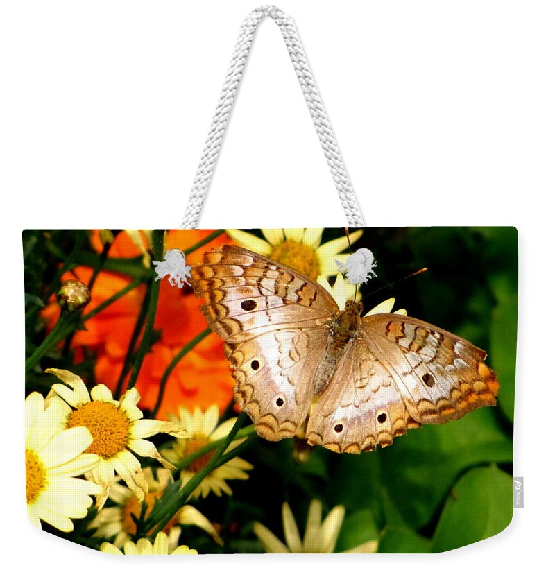 White Peacock Butterfly Weekender Tote Bag featuring the photograph White Peacock Butterfly I V by Marilyn Smith