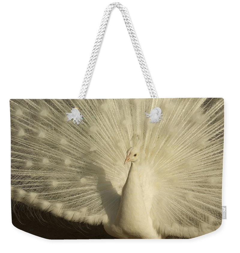 Weekender Tote Bag featuring the photograph White Peacock by Katerina Naumenko