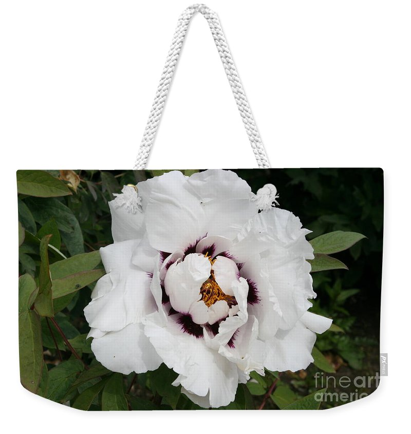 Flowers Weekender Tote Bag featuring the photograph White Peony by Christiane Schulze Art And Photography