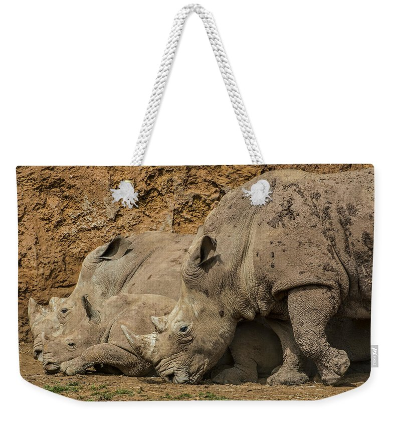White Rhino Weekender Tote Bag featuring the photograph White Rhino 2 by Arterra Picture Library