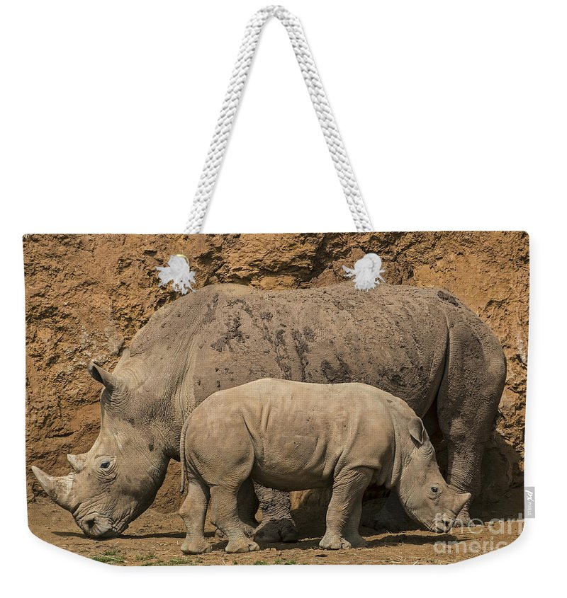 White Rhino Weekender Tote Bag featuring the photograph White Rhino 4 by Arterra Picture Library