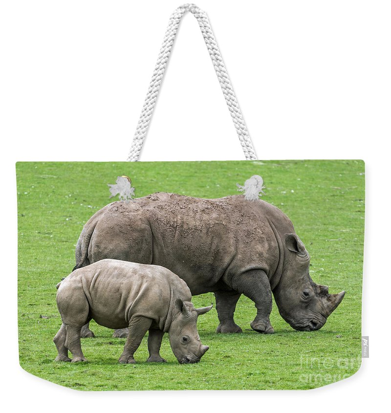 White Rhino Weekender Tote Bag featuring the photograph White Rhino 8 by Arterra Picture Library