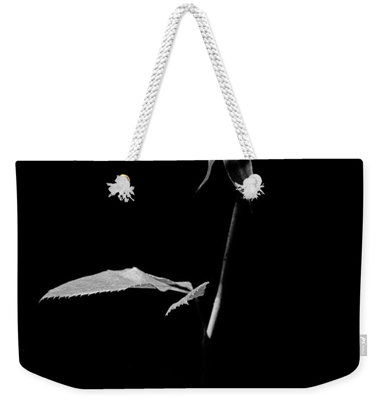 Rose Weekender Tote Bag featuring the photograph White Rose by Casper Cammeraat