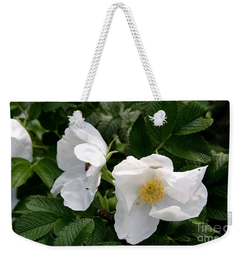 White Roses Weekender Tote Bag featuring the photograph White Roses by Christiane Schulze Art And Photography