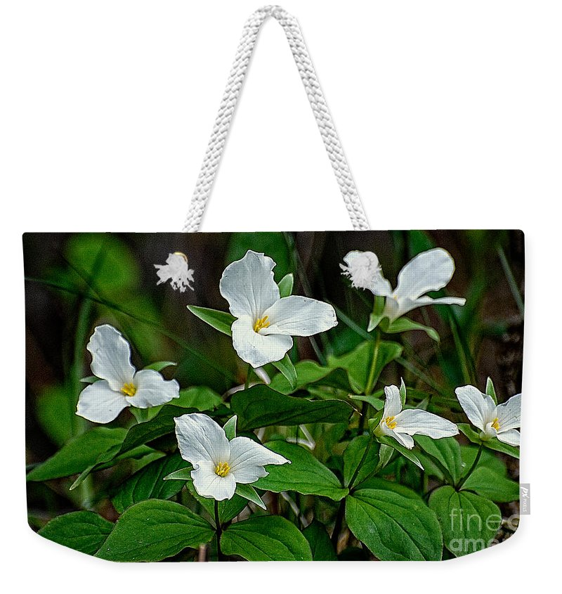 Flowers Weekender Tote Bag featuring the photograph White Trilliums by Bianca Nadeau
