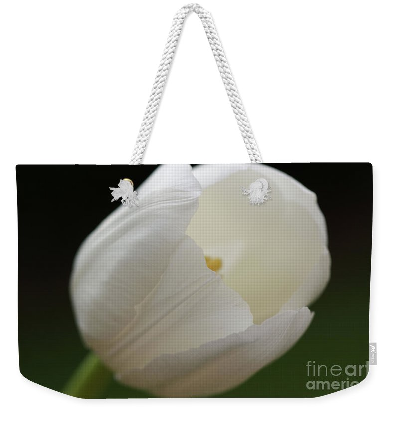 White Weekender Tote Bag featuring the photograph White Tulip 2 by Carol Lynch