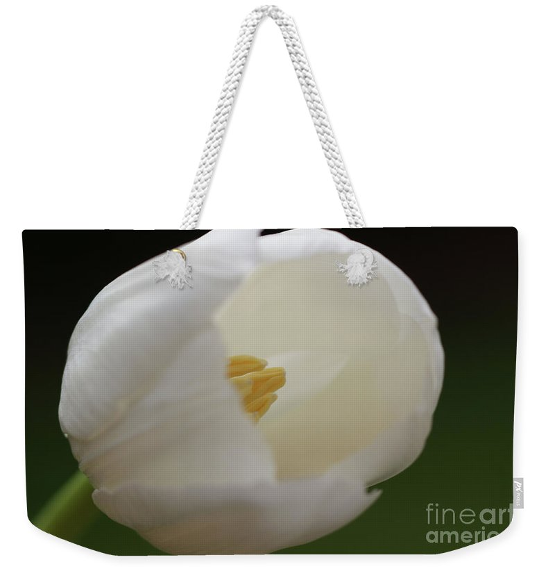 White Weekender Tote Bag featuring the photograph White Tulip 5 by Carol Lynch