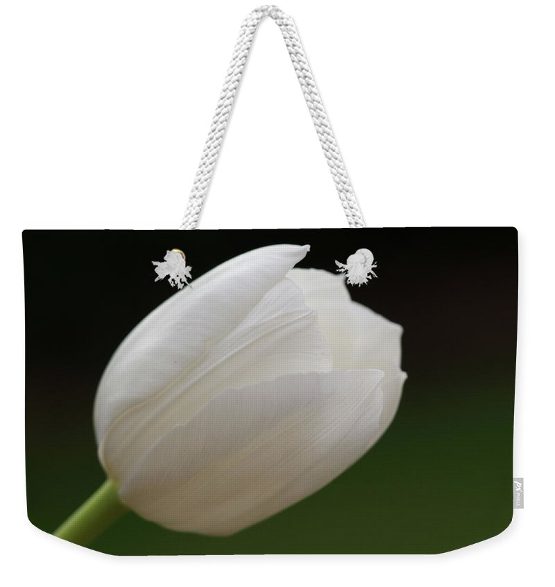 White Weekender Tote Bag featuring the photograph White Tulip by Carol Lynch