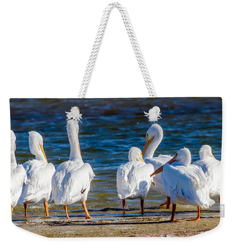 Who Is With Me On This Weekender Tote Bag featuring the photograph Who Is With Me On This? by Debra Martz