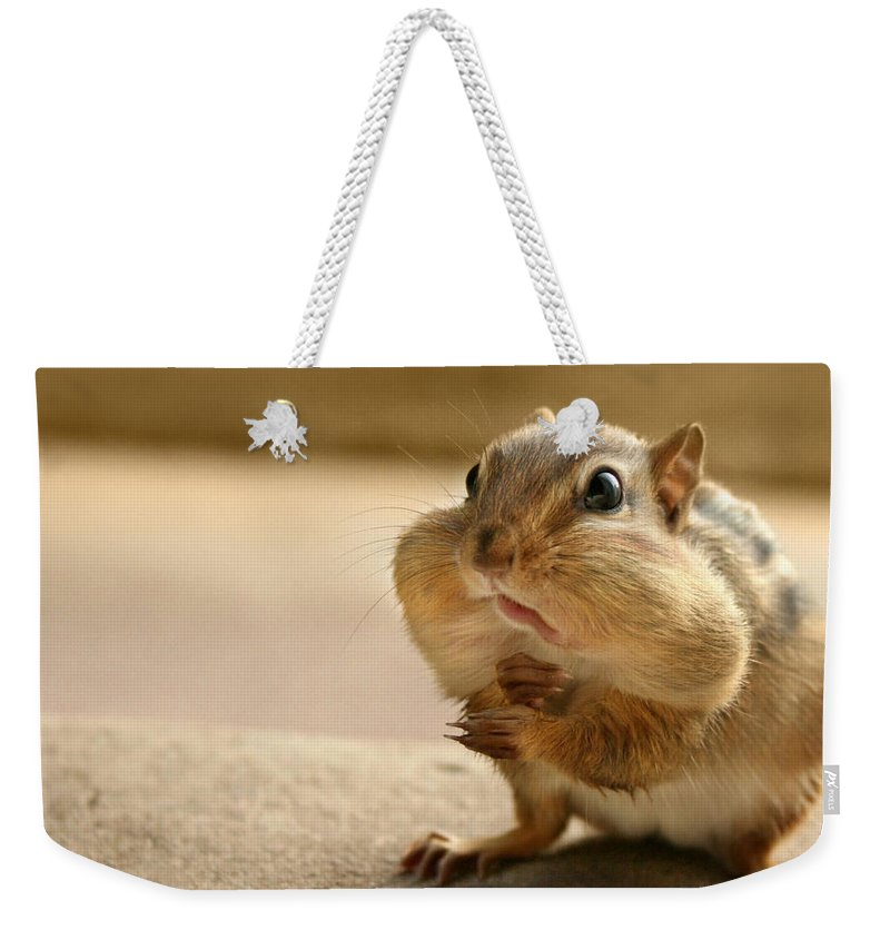 Chipmunk Weekender Tote Bag featuring the photograph Who Me by Lori Deiter