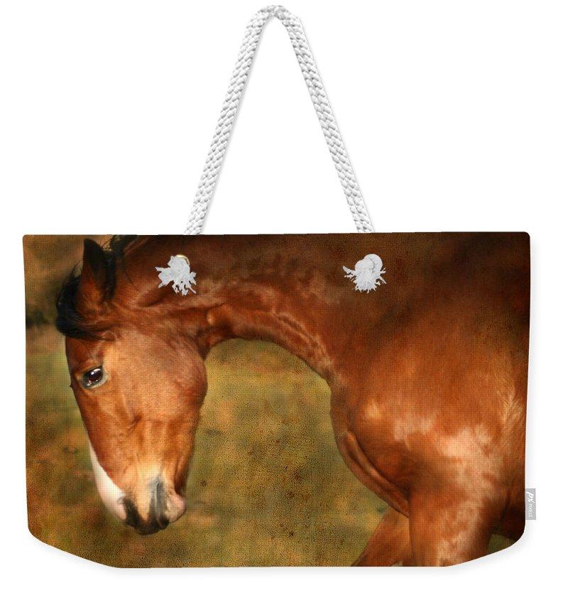 Horse Weekender Tote Bag featuring the photograph Wild by Angel Ciesniarska