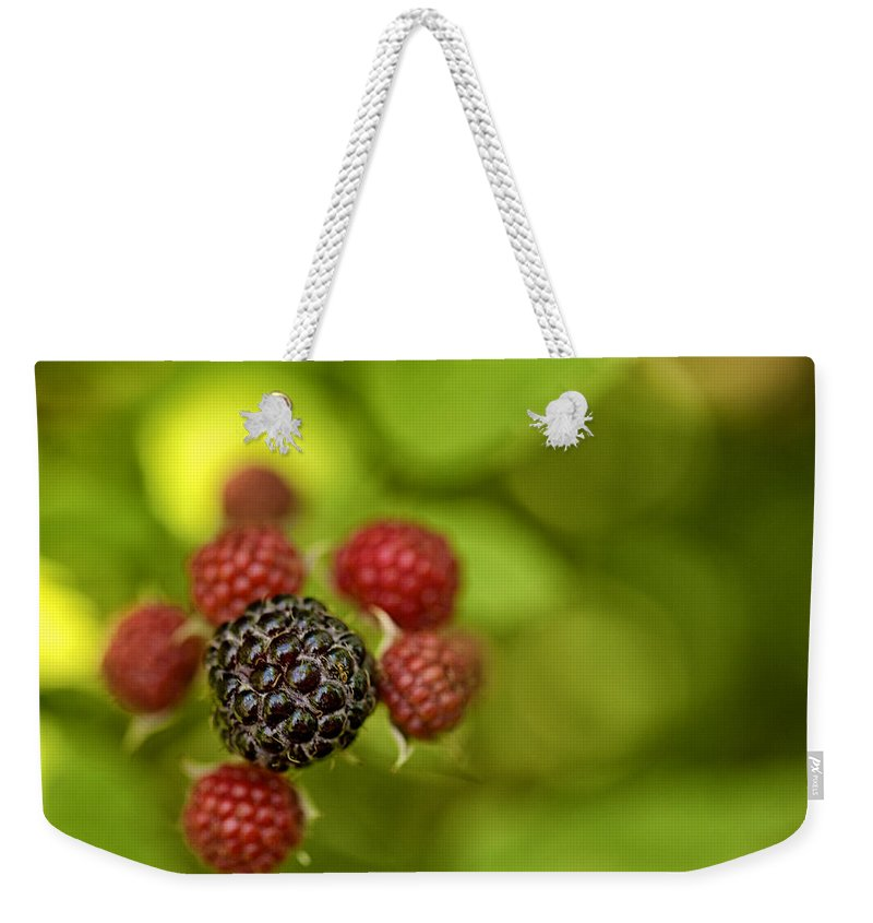 Macro Weekender Tote Bag featuring the photograph Wild Berries by Phill Doherty