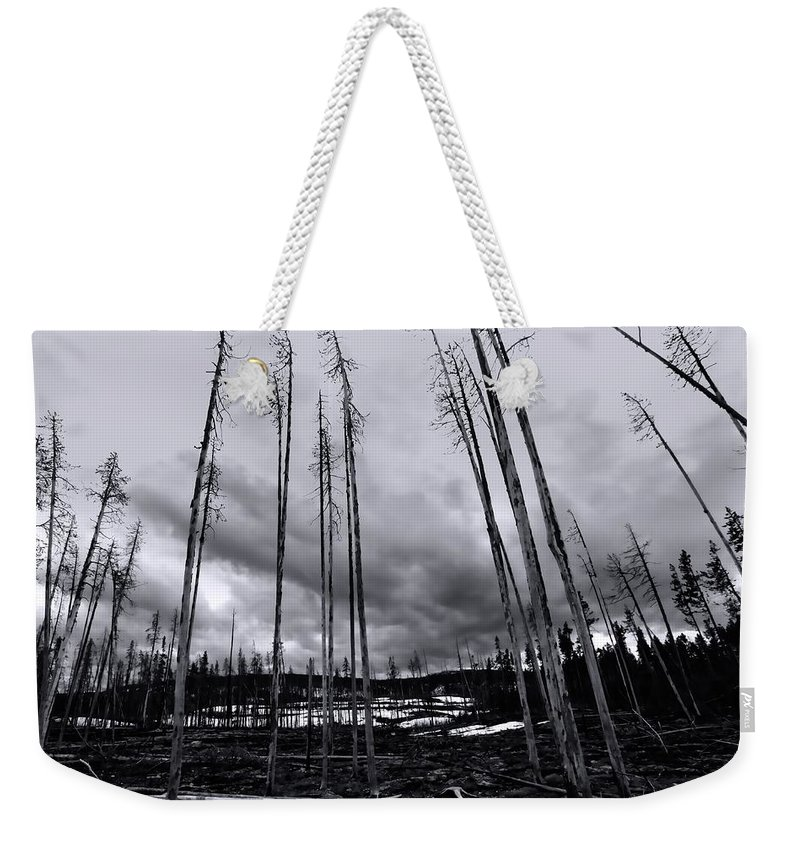 Yellowstone National Park Weekender Tote Bag featuring the photograph Wild Fire Aftermath In Black And White by Amanda Stadther