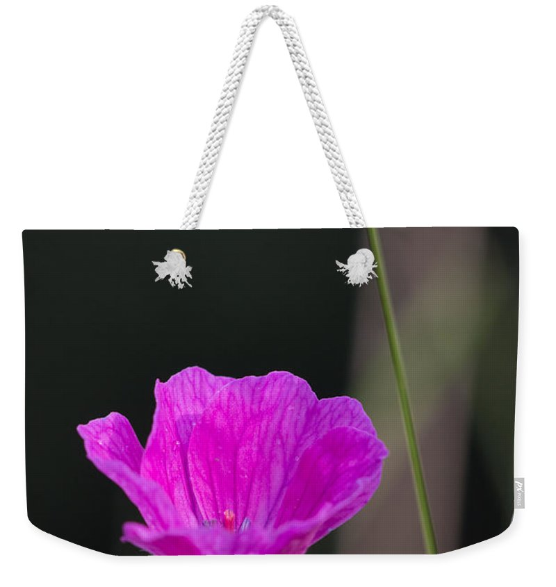 Bloody Cranesbill Weekender Tote Bag featuring the photograph Wild Flower Bloody Cranesbill by Jivko Nakev