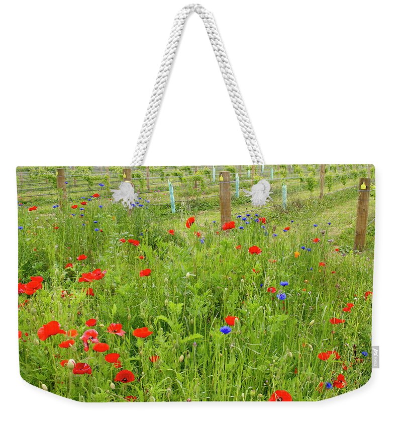 Scenics Weekender Tote Bag featuring the photograph Wild Flowers Along The Edge Of A by Lazingbee
