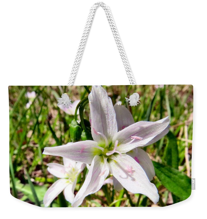 Pink Weekender Tote Bag featuring the photograph Wild Flowers by Art Dingo