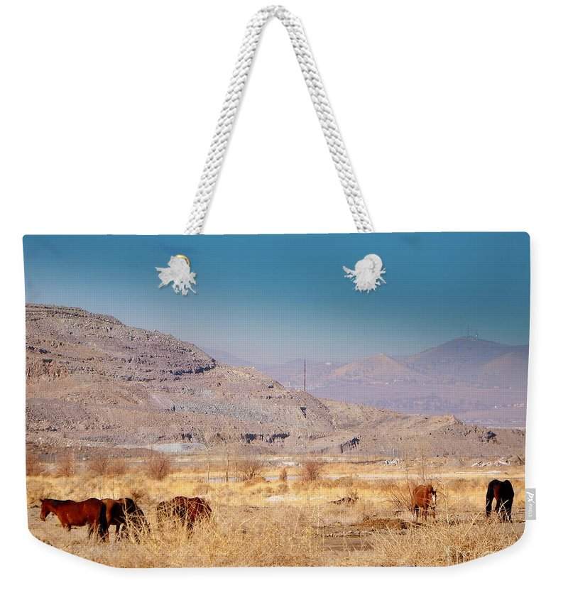 Acrylic Prints Weekender Tote Bag featuring the photograph Wild Nevada Mustang Herd by Bobbee Rickard