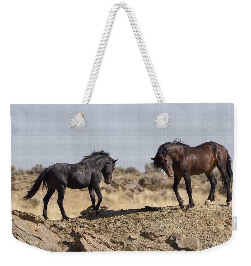 Horse Weekender Tote Bag featuring the photograph Wild Rocky Challenge by Carol Walker
