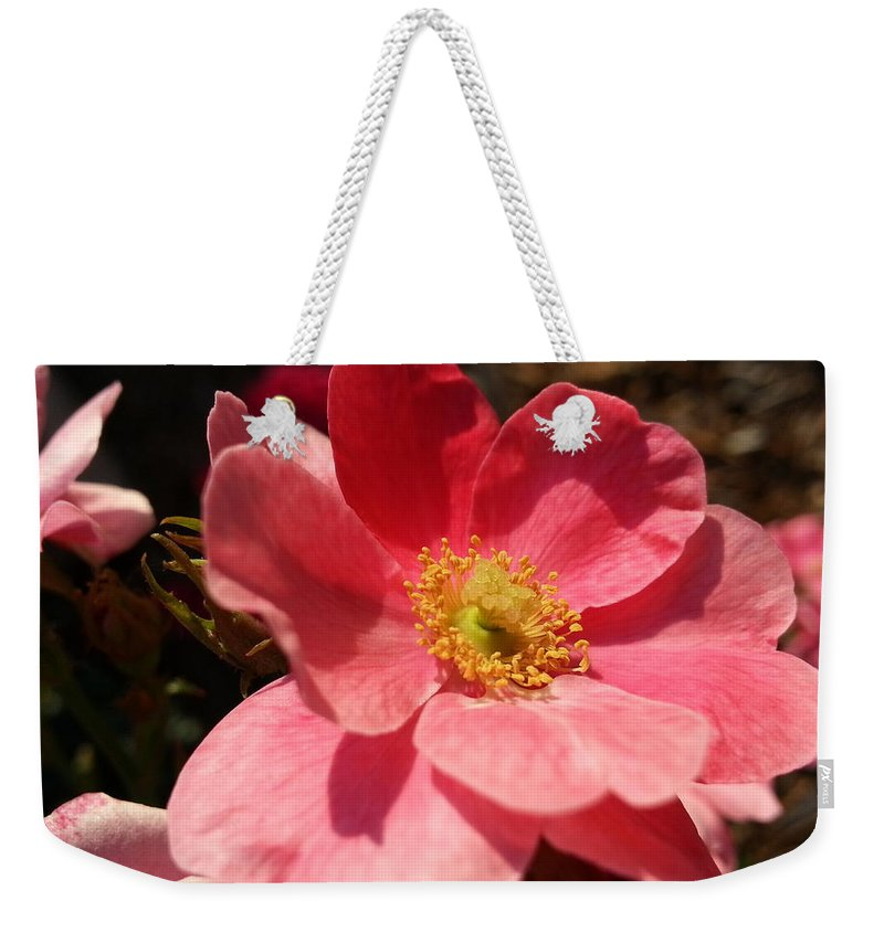 Salmon Weekender Tote Bag featuring the photograph Wild Rose by Caryl J Bohn