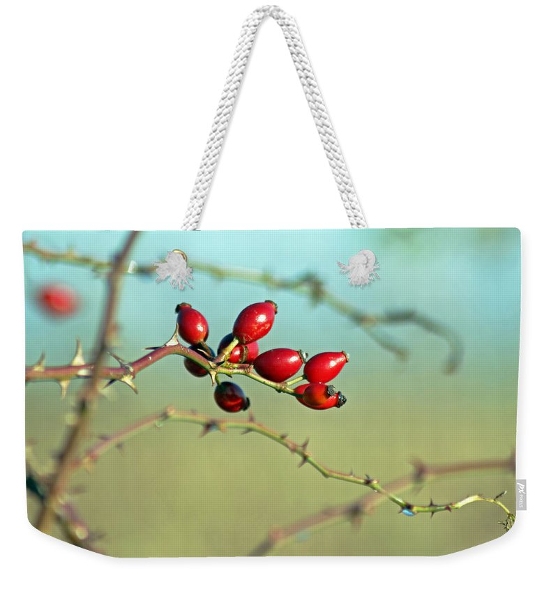 Flora Weekender Tote Bag featuring the photograph Wild Rose Hips by Tony Murtagh