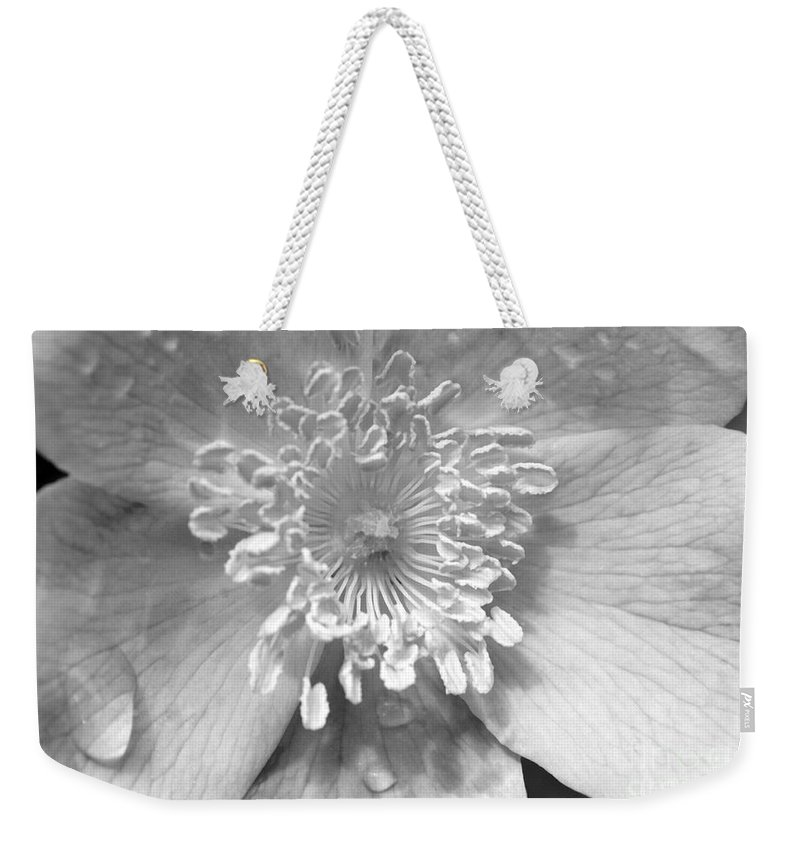 #albertarose Weekender Tote Bag featuring the photograph Wild Rose by Jacquelinemari