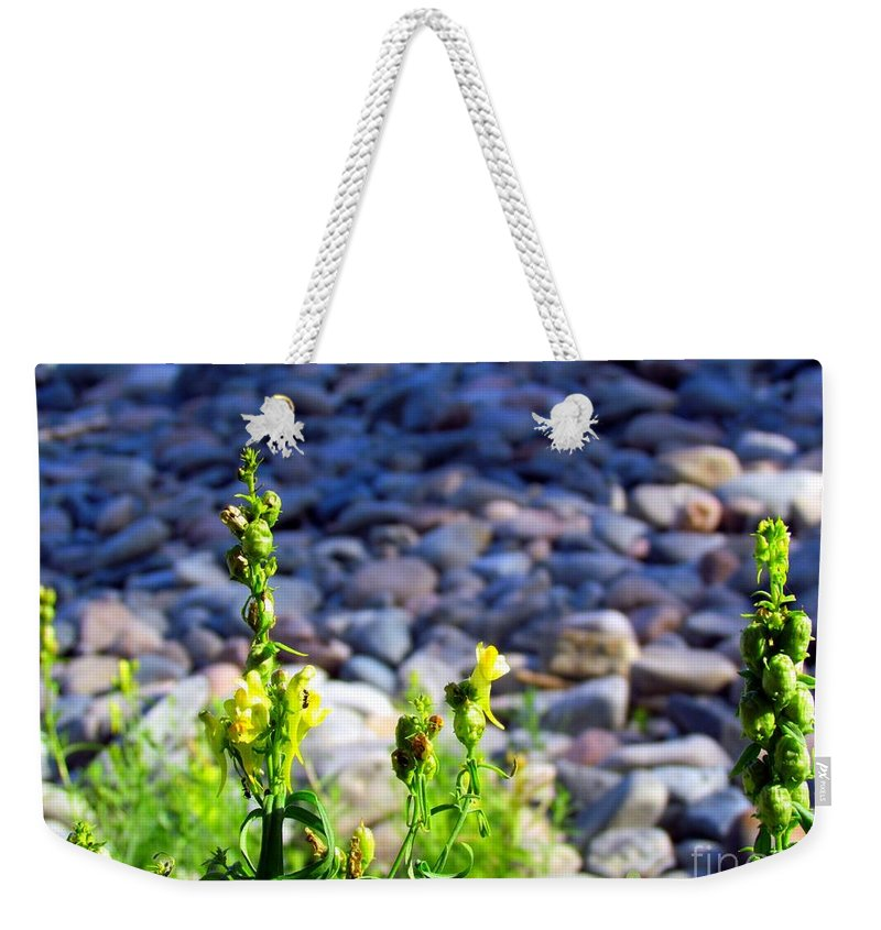 Wild Snapdragons Weekender Tote Bag featuring the photograph Wild Snapdragons by Elizabeth Dow