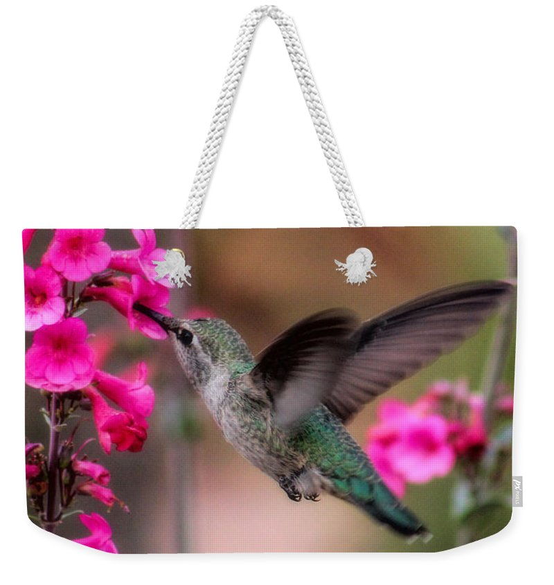 Hummingbird Weekender Tote Bag featuring the photograph Wild Thing by Tammy Espino