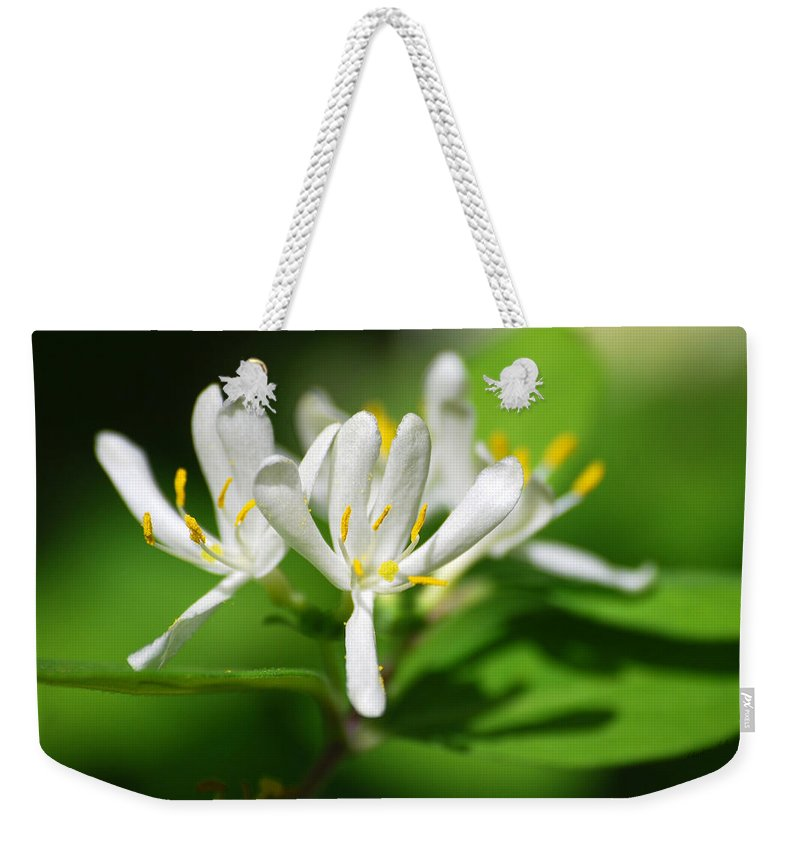 Honeysuckle Weekender Tote Bag featuring the photograph White Honeysuckle Flowers by Christina Rollo