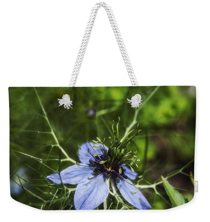 Wildflower Weekender Tote Bag featuring the photograph Wildflower by Beverly Cash