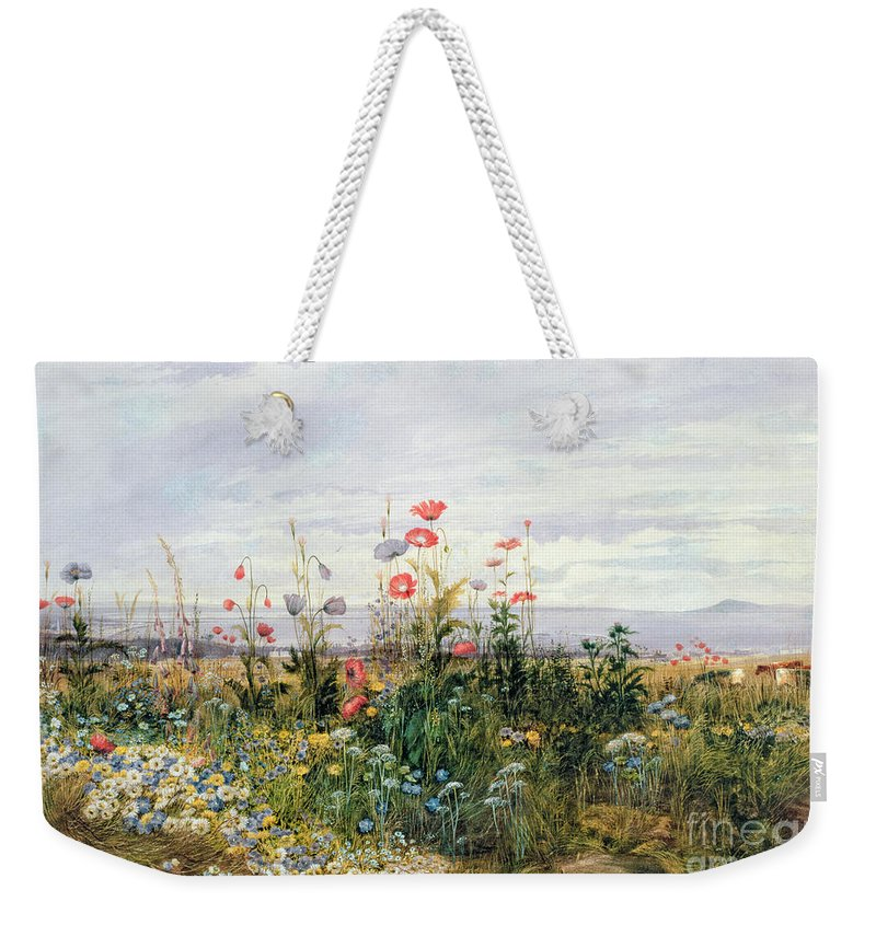 Meadow; Flowers; Irish; Wild; Landscape; Poppies Weekender Tote Bag featuring the painting Wildflowers with a View of Dublin Dunleary by A Nicholl
