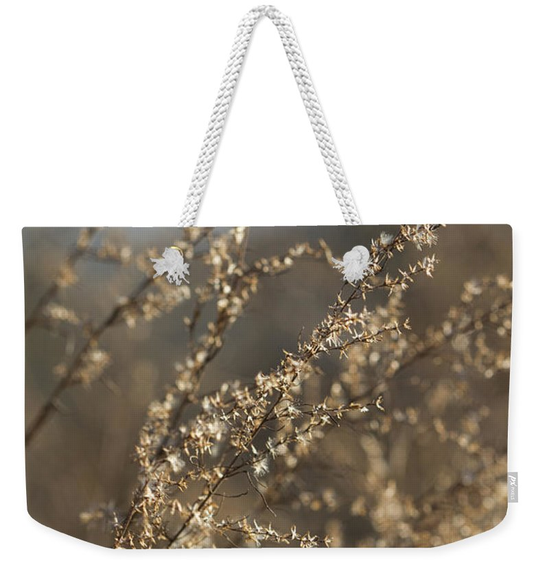 Weeds Weekender Tote Bag featuring the photograph Will O Wisps by Kathy Clark