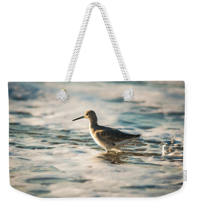 Avian Weekender Tote Bag featuring the photograph Willet Wading Through The Ocean Foam by Alex Grichenko