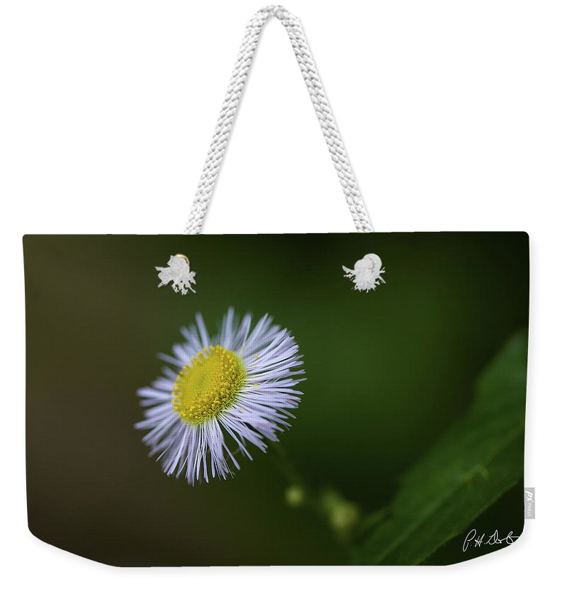 Belfountain Weekender Tote Bag featuring the photograph Willow Aster by Phill Doherty
