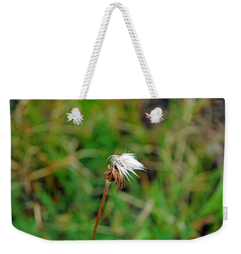 White Weekender Tote Bag featuring the photograph Winded White by Robert Meyers-Lussier