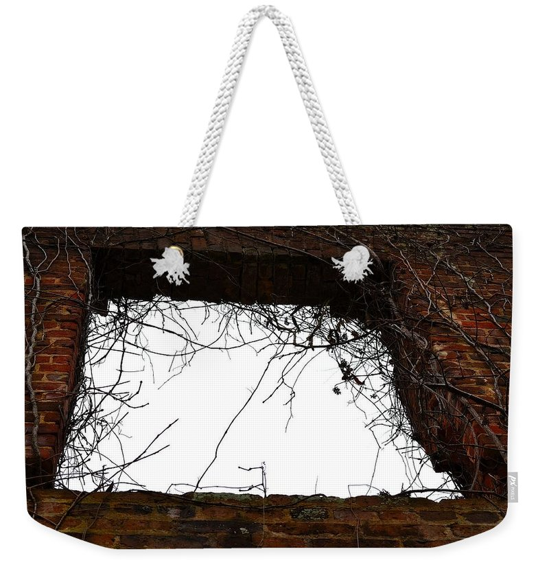 Sweetwater Creek State Park Weekender Tote Bag featuring the photograph Window Through Time by Tara Potts
