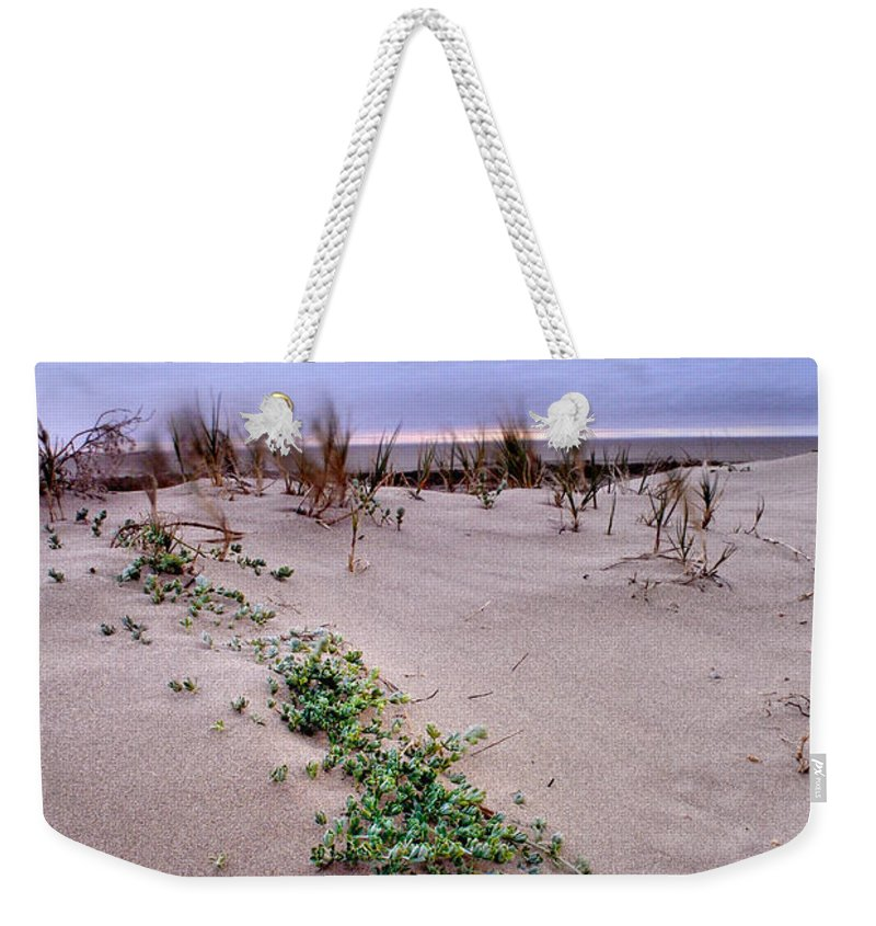 Seascape Weekender Tote Bag featuring the photograph Windy by Guido Montanes Castillo