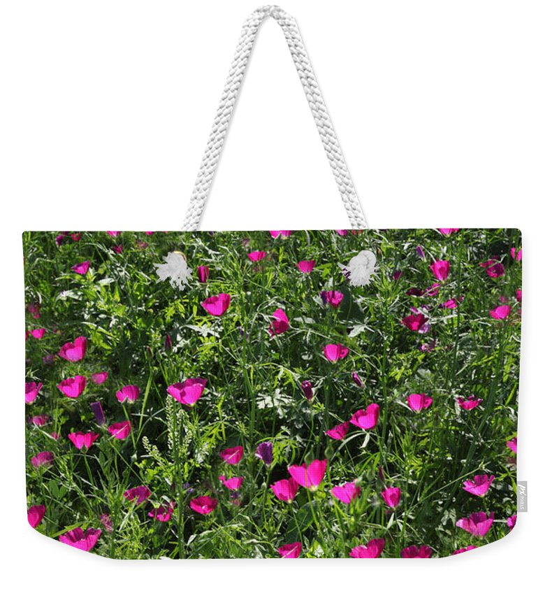 Texas Weekender Tote Bag featuring the photograph Wine Cups With Backlighting by Susan Rovira