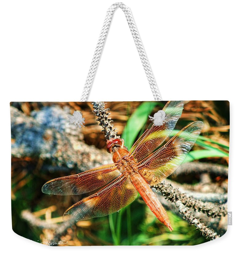 Wings Weekender Tote Bag featuring the photograph Winged Wonder by Sylvia Thornton